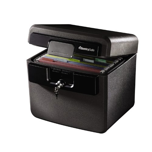 SentrySafe Fireproof File Safe (HD4100CG)