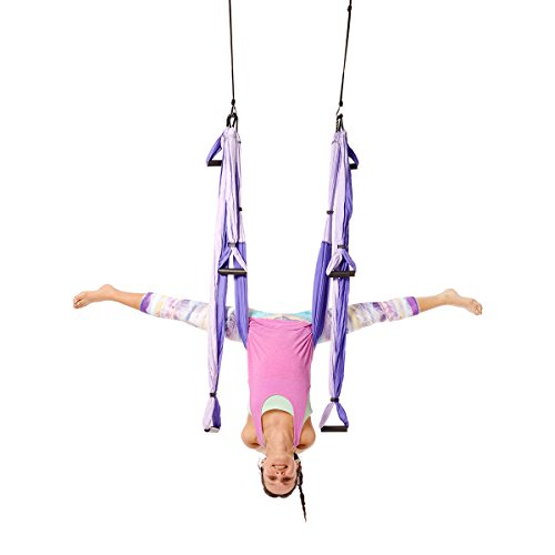 YOGABODY Naturals Yoga Trapeze - Comes with a free DVD