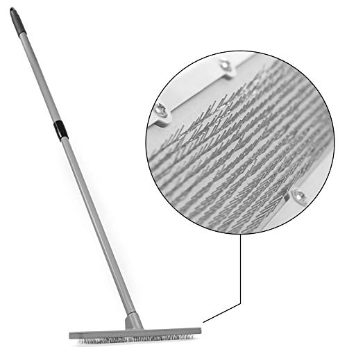 Carpet Groomer And Rug Rake With 12 In Wide Head Carpet